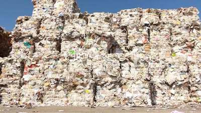 tiger essay Paper Recycling