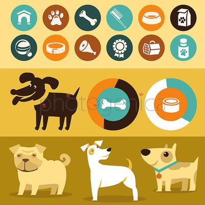 Find Your Animal Symbols amp Animal Symbol Meanings